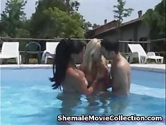 Couple Enjoys a Tranny!